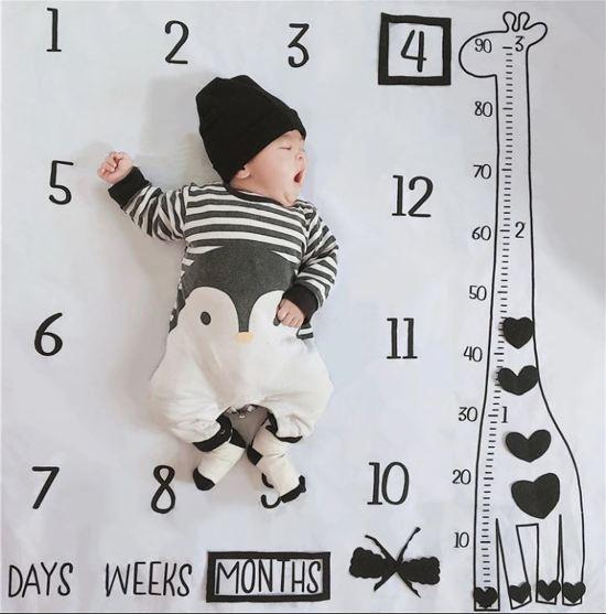 Milestone deken giraffe - Mijlpaaldeken - fotoherinnering - kraamcadeau - babyshower cadeau - foto mijlpaaldeken -
