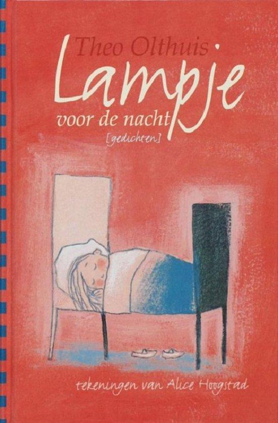 Cover van het boek 'Een lampje voor de nacht' van Theo Olthuis