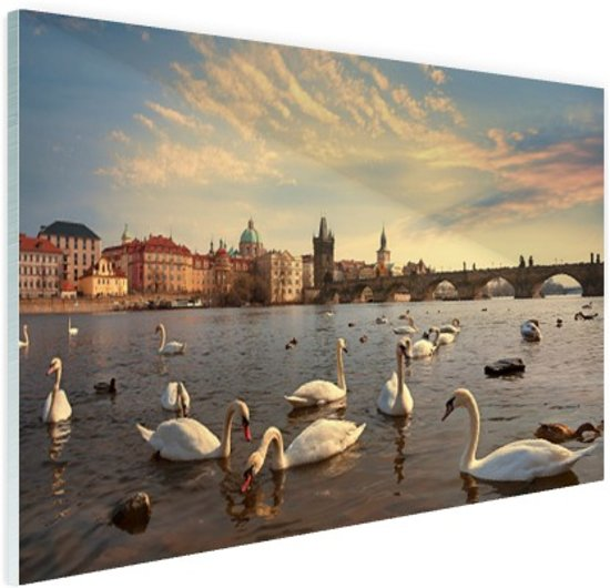 Zwanen Karelsbrug Praag Glas 30x20 cm - Foto print op Glas (Plexiglas wanddecoratie)