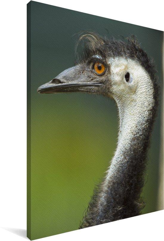 Portret van een emoe met oranje ogen Canvas 40x60 cm - Foto print op Canvas schilderij (Wanddecoratie woonkamer / slaapkamer)