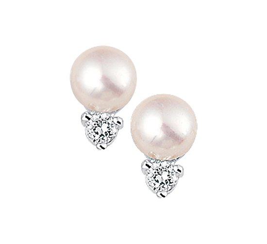 The Jewelry Collection Oorknoppen Parel En Zirkonia - Zilver Gerhodineerd