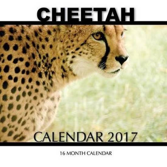 Cheetah Calendar 2017