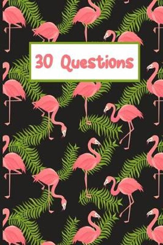 Pink Flamingo 30 Questions Of Happiness Monthly Journal: 6x9 Guided Journal To Write In