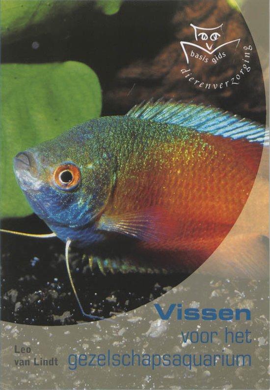 Vissen Voor Het Gezelschapsaquarium