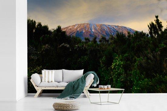 Fotobehang vinyl - De Kilimanjaro boven de bossen in het Afrikaanse Tanzania breedte 420 cm x hoogte 280 cm - Foto print op behang (in 7 formaten beschikbaar)