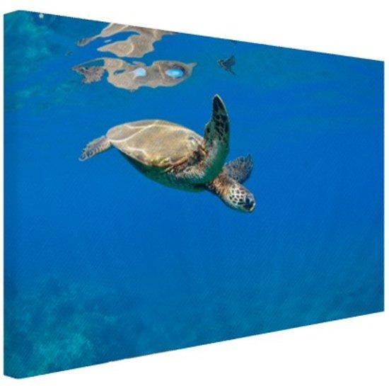 Schildpad zwemmend in oceaan Canvas 30x20 cm - Foto print op Canvas schilderij (Wanddecoratie)