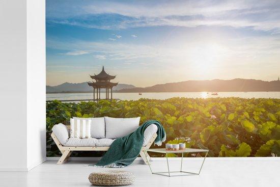 Fotobehang vinyl - Waterplanten in het meer van Hangzhou breedte 330 cm x hoogte 220 cm - Foto print op behang (in 7 formaten beschikbaar)