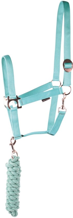 Harry's Horse Halsterset Initial - Turquoise - Cob