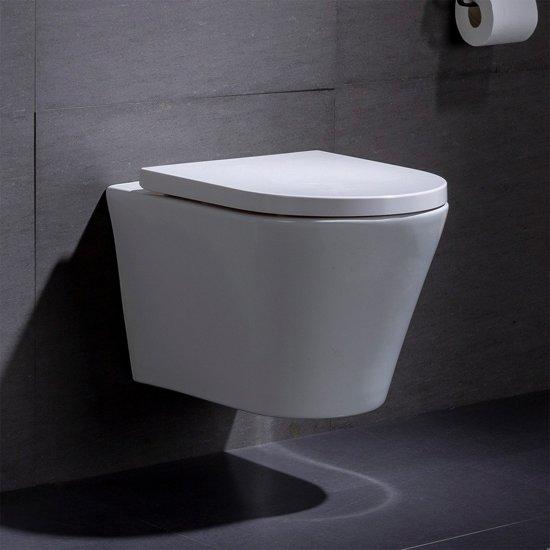 Fantastic Wandcloset Hangend Toilet Saturna Inbouwtoilet Rimfree Wc Pot Pabps2019 Chair Design Images Pabps2019Com