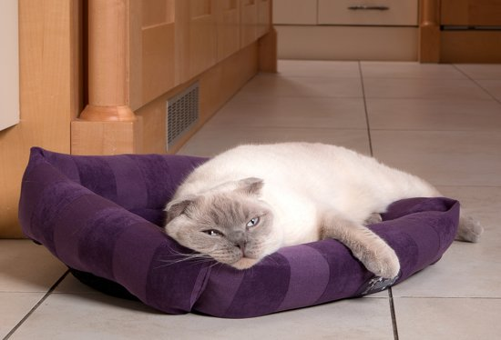 Scruffs AristoCat Lounger Kattenmand - Roze - 50 x 40 cm