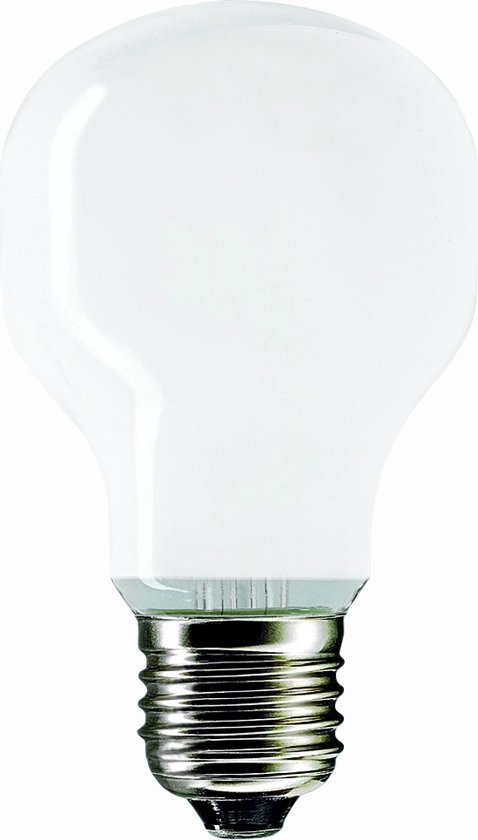Philips Standaarlamp GLS Softone Opaal Wit 100W E27 230V T55