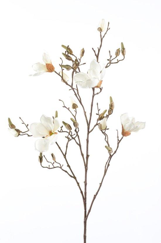 Emerald - Royale magnoliatak - 105 cm - Wit