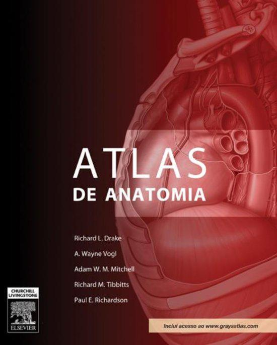 Gray ebook de anatomia