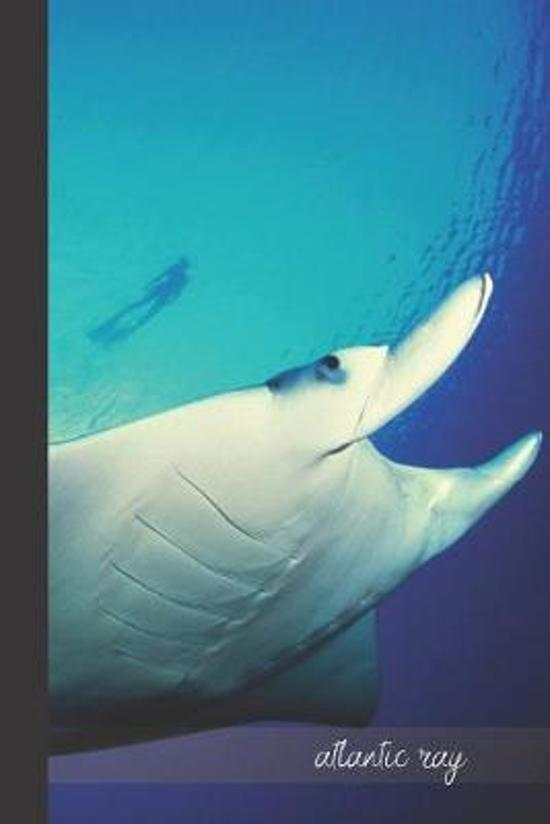 Atlantic Ray: small lined Manta Ray Notebook / Travel Journal to write in (6'' x 9'') 120 pages