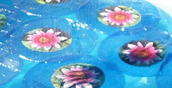 Solar Lily zwembadverwarming en afdekking 2 in 1