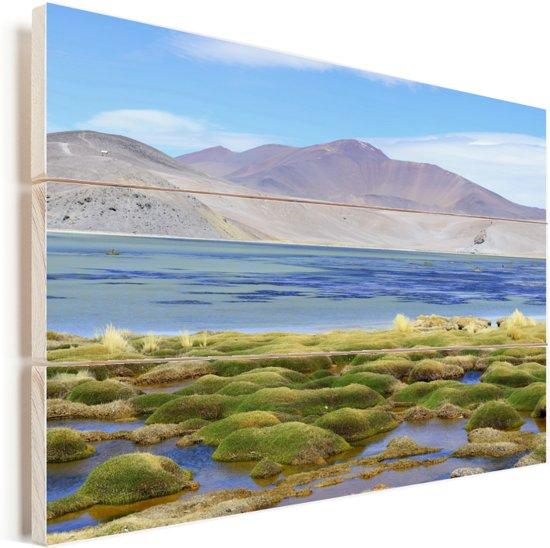 Kleurrijk meer in Nationaal park Nevado Tres Cruces in Chili Vurenhout met planken 90x60 cm - Foto print op Hout (Wanddecoratie)