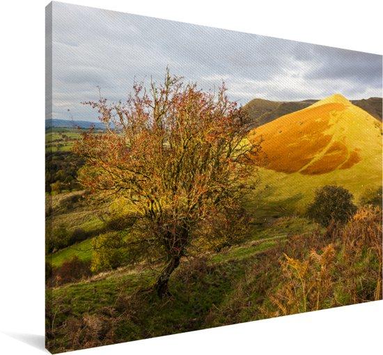 Geel-gekleurde foto van het landschap in het Nationaal park Brecon Beacons Canvas 90x60 cm - Foto print op Canvas schilderij (Wanddecoratie woonkamer / slaapkamer)