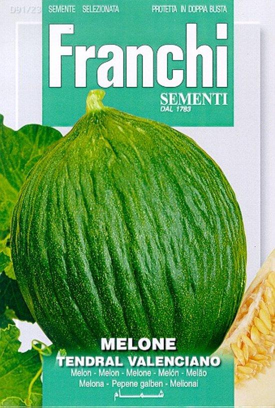 Fr Melone Tendral Valenciano - Meloen 91/23
