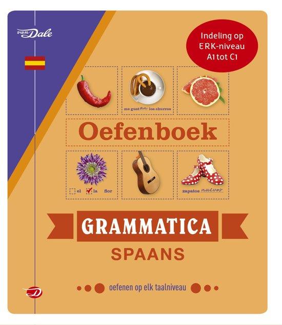 Afbeelding van Van Dale oefenboek grammatica Spaans
