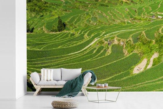 Fotobehang vinyl - Kleurrijke Rijstterrassen van Lóngjĭ in China breedte 540 cm x hoogte 360 cm - Foto print op behang (in 7 formaten beschikbaar)