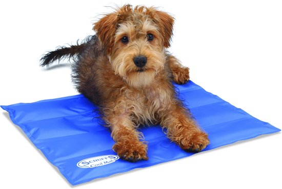 Scruffs Koelmat Hond - Blauw - S: - 50 x 40 cm
