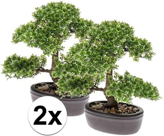 Bonsai Boom Verzorgen : Bol.com 2x groene kunst mini bonsai boompje in pot 32 cm