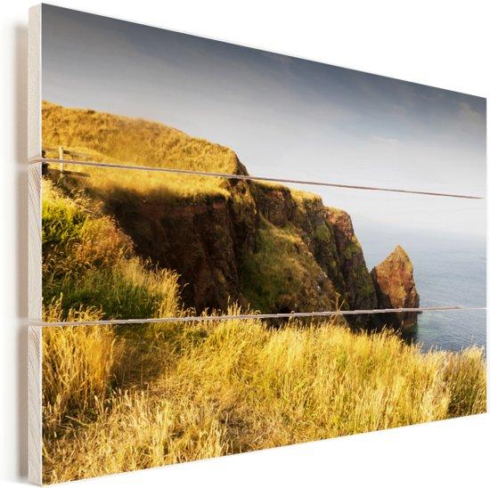 Geel gierst op de kliffen van het Nationaal Park Pembrokeshire Coast in Wales Vurenhout met planken 120x80 cm - Foto print op Hout (Wanddecoratie)