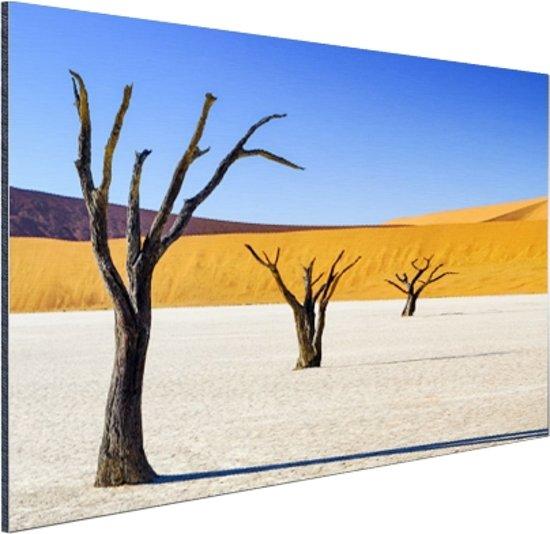 Boompjes in woestijn Aluminium 30x20 cm - Foto print op Aluminium (metaal wanddecoratie)