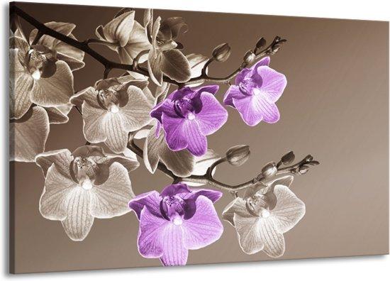 Canvas schilderij Orchidee | Bruin, Paars | 140x90cm 1Luik