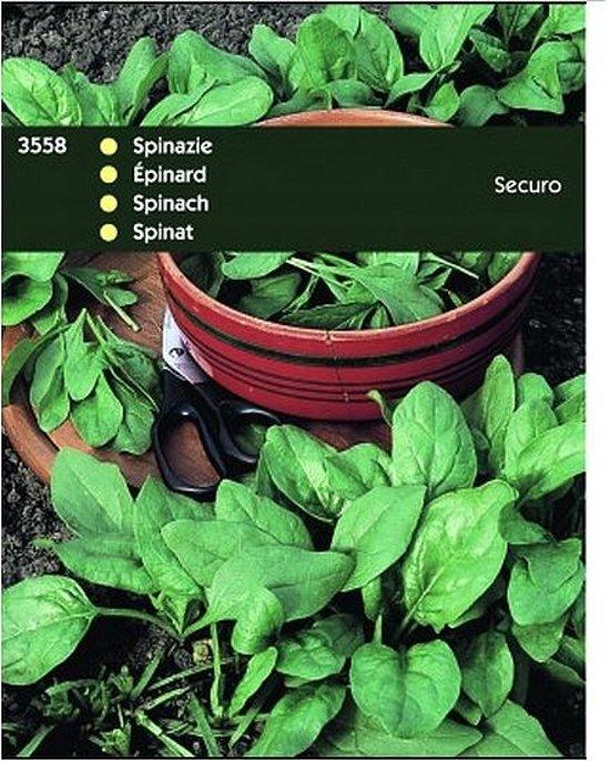 Spinazie Securo 100 g - set van 6 stuks