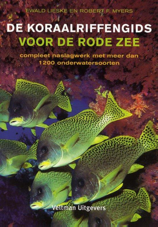 De koraalriffengids voor de Rode Zee