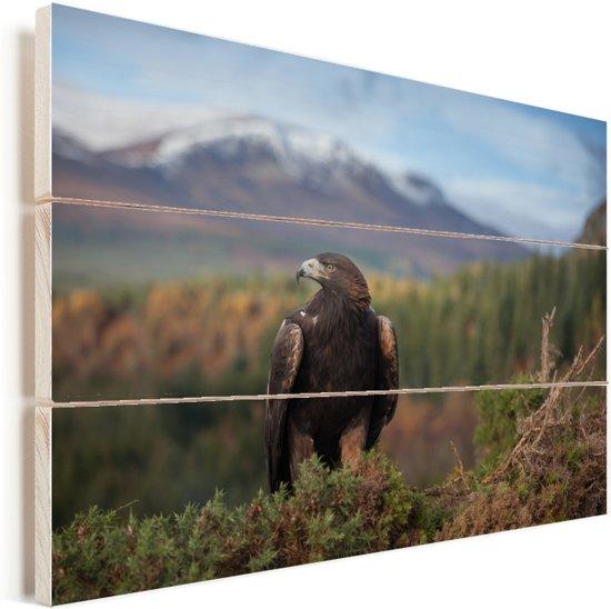 Steenarend zit tussen het struikgewas voor een bergketen Vurenhout met planken 90x60 cm - Foto print op Hout (Wanddecoratie)