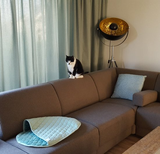Noseys Cats - Kattenslaapzak - 60x40cm - Ice - premium