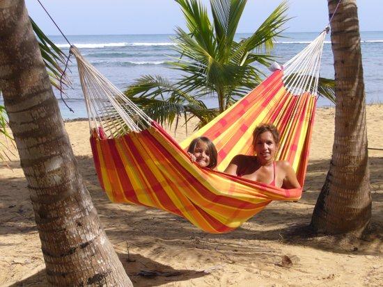 Hangmat 'Barbados' papaya