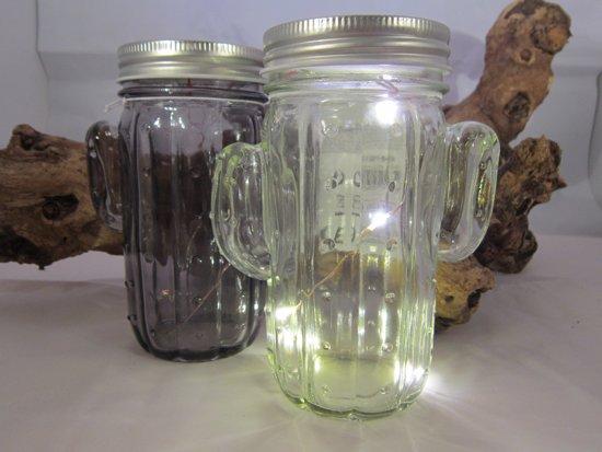 2 stuks Cactus-potjes met led-verlichting