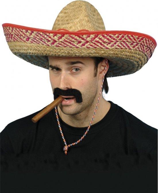 Mexicaanse sombrero hoed verkleedaccessoire voor volwassenen - Carnaval feestartikelen strohoeden