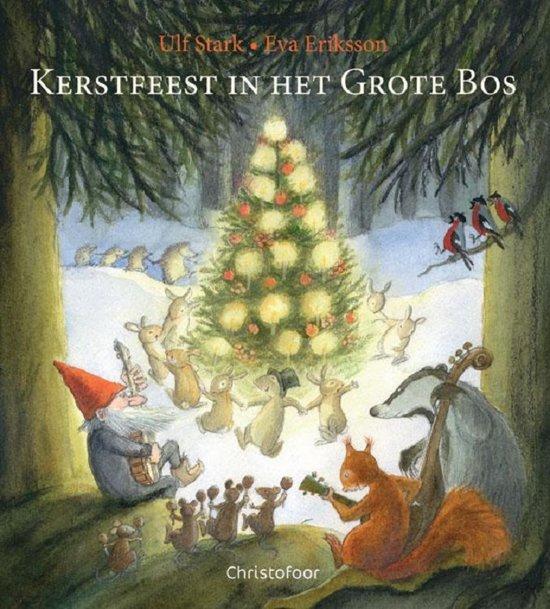 Afbeeldingsresultaat voor afbeeldingen kerststemming in het bos