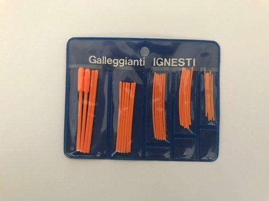 Ignestie Antennes Ass.
