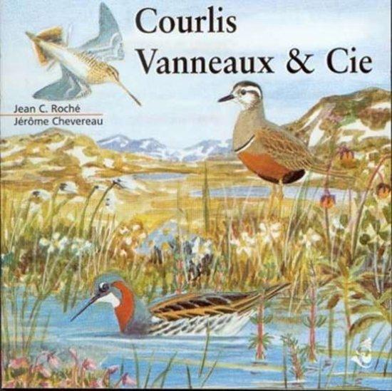 Courlis & Vanneaux