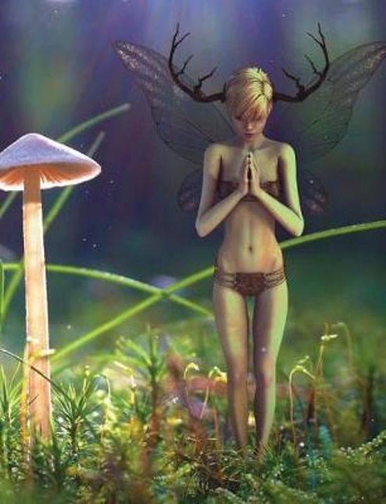 Fairy in the Garden Notebook
