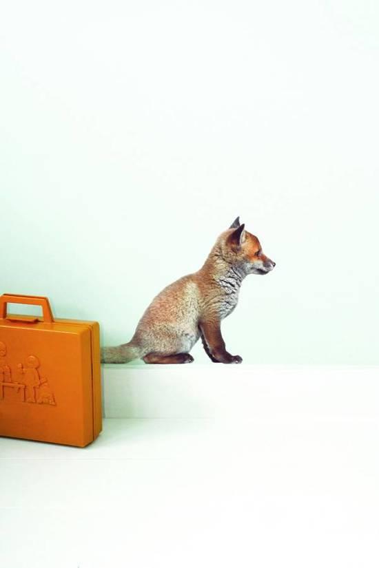 KEK Amsterdam Muursticker forest friends vossen welp