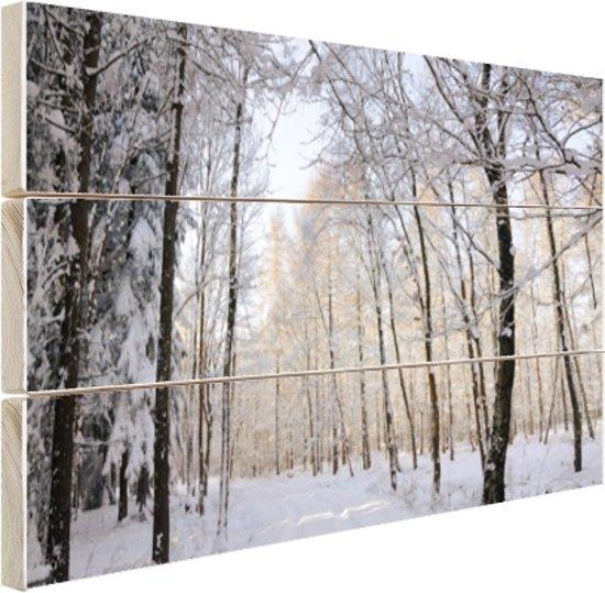 FotoCadeau.nl - Besneeuwd bospad Hout 120x80 cm - Foto print op Hout (Wanddecoratie)