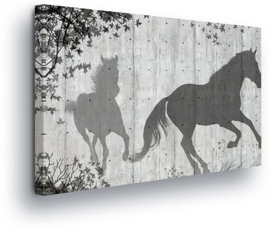 Horse Grey Canvas Print 60cm x 40cm