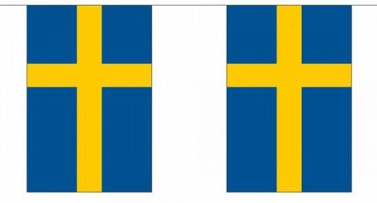 Luxe Zweden vlaggenlijn 9 m