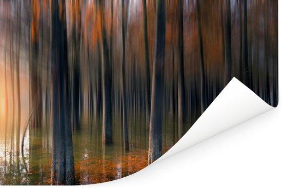 Schilderachtige weergave van de boomstammen van de Redwood forest in China Poster 30x20 cm - klein - Foto print op Poster (wanddecoratie woonkamer / slaapkamer)