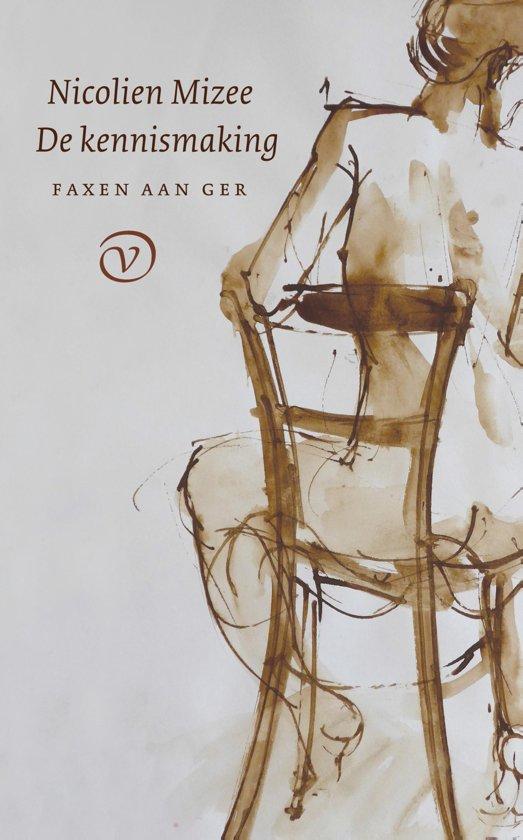 Boek cover De kennismaking van Nicolien Mizee (Onbekend)