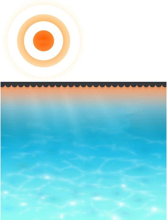 vidaXL - Zwembad Zwembad afdekzeil zomer 10 x 5 m (zwart) 90342