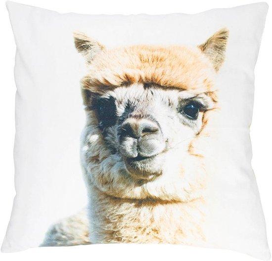 canvas kussen baby alpaca beige 50x50cm