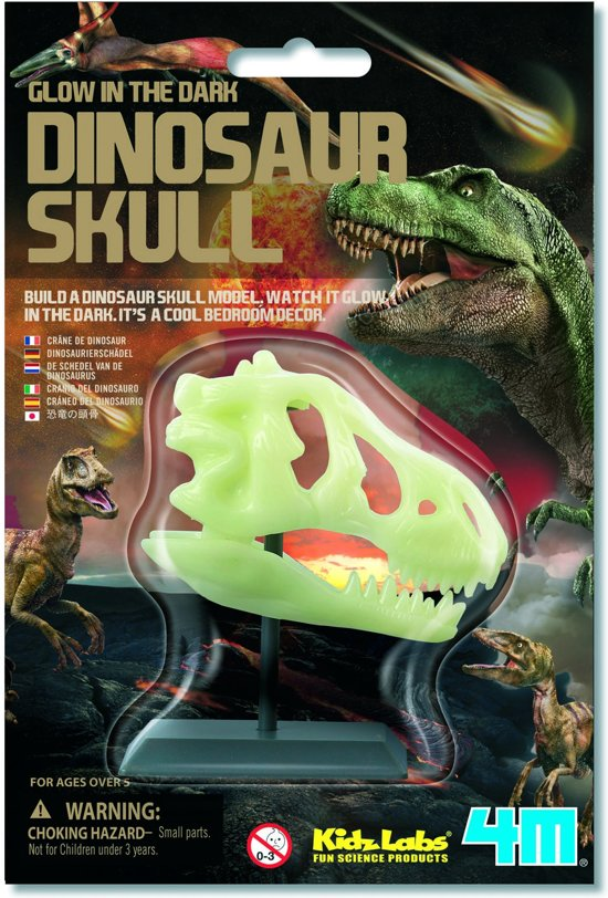 4M KidzLabs Science Card - Dinosaur Skull Glow-in-the-Dark - Hobbyset