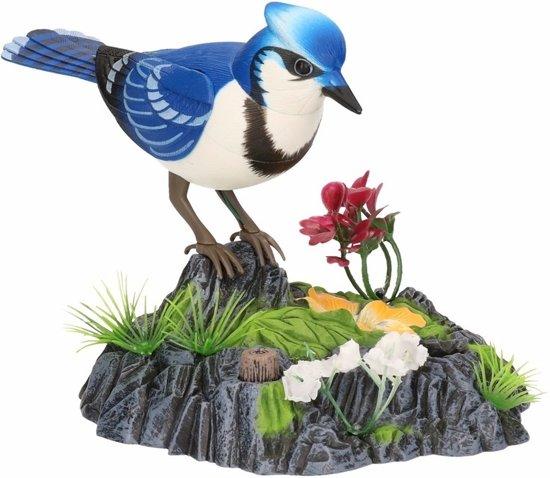 Wonderbird model A
